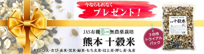 元気野菜セットでもれなくプレゼント! 熊本から産地直送!